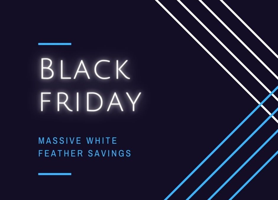 Save with our Black Friday deals!